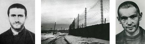 Ronkin, Ginzburg & Mordovia (1969)